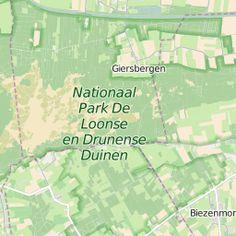 Er zijn een heleboel fietspaden die door de 'Brabantse woestijn' heen lopen. Fiets over prachtige paden langs stuivend zand, heide en bos.Nationaal Park De…