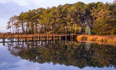 Great Small Towns Near DC: Chincoteague | Washingtonian