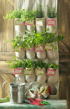 Neat herb garden idea. I could do this on the fence using those collected coffee containers.