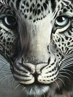 7 Best Amazing Bodypainting Images Liu Bolin Body Painting Optical Illusions