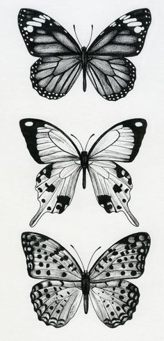 Lisa Alderson - LA - Butterflies