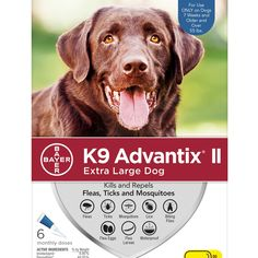 Advantix II Topical Extra Large Dog Flea & Tick Treatment, 2 Packs of 6 Dog Training Techniques, Dog Training Tips, Potty Training, Crate Training, Mosquito Repellent For Dogs, To Go, Easiest Dogs To Train, Positive Reinforcement