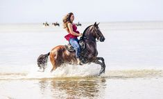Colombian Trote y Galope mare. PATRONA DEL ENCANTO Woman Riding Horse, Riding Horses, Equine Photography, Creatures, Couture, Beach, Happy, Photos, Animals