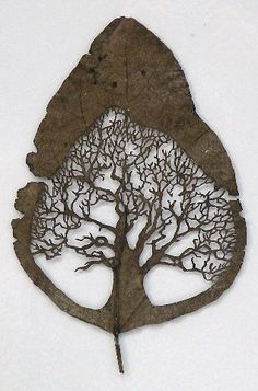 Lorenzo Duran cut these amazingly intricate designs out of leaves. More: Amazing Cut Leaves Art HOW TO - Pressed Leaf Art Toilet Paper Roll Tree Cutout Art Et Nature, Leaf Cutout, Spanish Artists, Art Plastique, Tree Art, Paper Cutting, Cut Paper, Paper Art, Art Photography