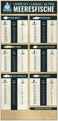Der Längen- und Gewichtsumrechner für Meeresfische