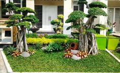 73 Minimalist Home Terrace Ideas with Minimalist Plant Garden. Minimalist Garden, Minimalist House Design, Minimalist Home, Terrace Design, Garden Design, Small Pool Design, Terrace Garden, Terrace Ideas, Small Gardens