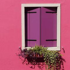 Be daring by choosing a bright pink paint.