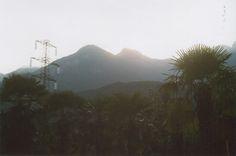 palms/mountains Palms, Verona, Venice, Mountains, Nature, Travel, Palmas, Naturaleza, Viajes