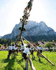 @visit.mondsee в Instagram: «Reposted from @visitaustria - Raising the Maypole! The tradition of having a maypole in Austria dates back to the 16th century. It's…» Seen, 16th Century, Austria, Raising, Dates, Dolores Park, Traditional, Mountains, Nature