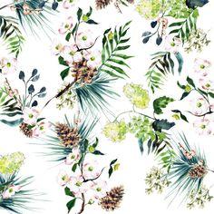 "Inslee Fariss on Instagram: ""Botanicals on paper"""