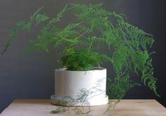 white porcelain planter large size gloss white by vitrifiedstudio, $75.00