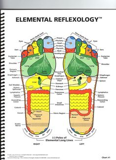 Elemental Reflexology Chart