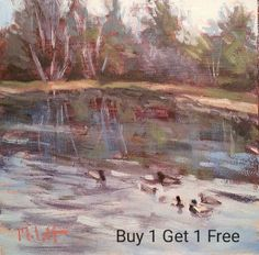 Mallard Ducks Pond Nature Landscape Studio Special Ending Soon
