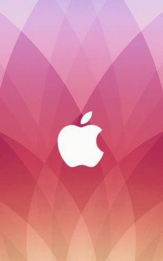 Pink Apple Logo Wallpaper Pink Apple Logo Wallpaper Download