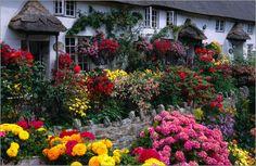Manfred Gottschalk - Bunter englischer Landschaftsgarten bei Coombe Cottage