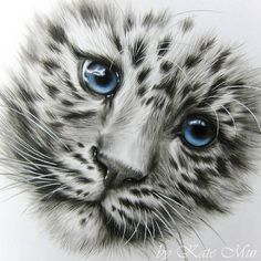 Face of a Adorable Clouded Snow Leopard Cub. Realistic Animal Drawings, Pencil Drawings Of Animals, Animal Sketches, Art Sketches, Leopard Tattoos, Animal Tattoos, Snow Leopard Tattoo, Tattoo Avant Bras, Leopard Cub