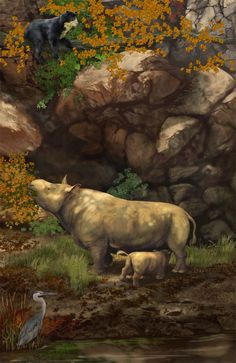 Teleoceras, Short-Faced Bear and Heron in the Miocene Epoch of Southern Appalachia by Karen Carr Studio