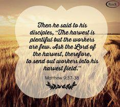 Matthew 9:37-38 - The Harvest