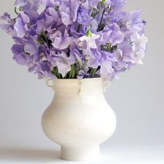 Purple sweet peas in Frances Palmer Pottery