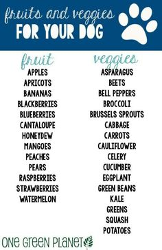 Safe Fruits & Veggies for Fur Babies