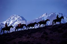 Go on a horse pack trip for like a week, backcountry riding :)