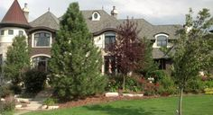 Chicago home before services Specimen Trees, Moving Services, Chicago, Country Roads, Shades, Mansions, Landscape, House Styles, Plants