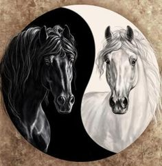 Horse Yin & Yang. There's a book The Tao of Equus: A Woman's Journey of Healing and Transformation Through the Way of the Horse that looks interesting as well.