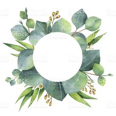 Watercolor round wreath with eucalyptus leaves and branches. royalty-free stock vector art
