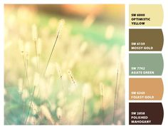 Paint colors from Chip It! by Sherwin-Williams. picture: http://www.etsy.com/listing/118928667/summer-grass-photography-nature-photo?