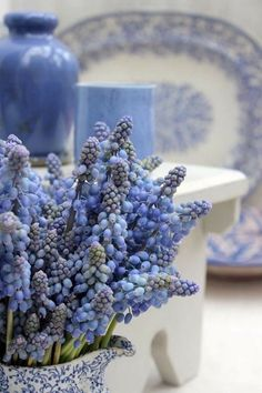 A Bunch for the Weekend-# Blue Grape Hyacinths-Ingrid Henningsson-Of Spring and Summer Lavender Blue, Periwinkle Blue, Love Blue, Blue And White, Blue Dream, Spring Flowers, Blue Flowers, Vibeke Design, White Cottage