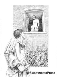 Illustration by John LaChatte for KD Grace's 'Allotted Views' in the anthology 'Immoral Views'
