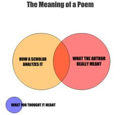 The Meaning of a Poem