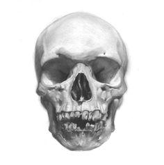 http://img225.imageshack.us/img225/6546/skull1gy7.jpg