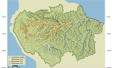the scientists divided the river basin into a number of sub-basins defined by 11 different stream orders ranging from tiny streams to the Amazon River itself. Seven distinct levels of basins were defined, with the main Amazon Basin as Level 1, and larger tributary sub-basins such as the Ucayali and the Madeira as Level 2, and so on.