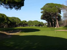 Le golf : Old Course