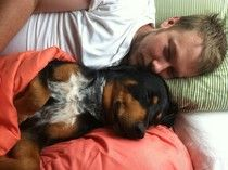 Dog brutally murdered, dragged and dumped in woods -- petition attached for justice for Enzo