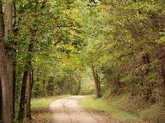 Back Roads of the Ozarks   #Ozarks #Ozark Mountains #horses #Missouri