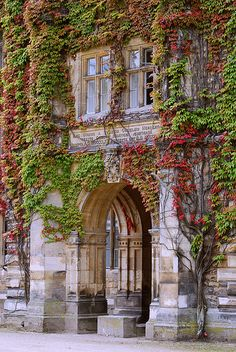 ~Ivy Entrance, Thoresby Hall, Nottinghamshire, England~