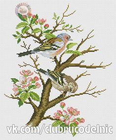 Birds family (DMC).pdf