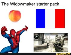 overwatch, widowmaker, starterpack