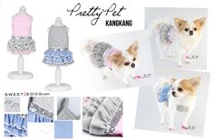 Dog Dress kang kang Pretty Pet www.sweetiedog.com #chihuahua #chien #dog #puppy #dogclothes #dogdress