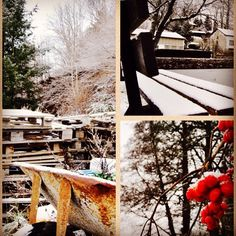 #hiver #neige #froid #photography