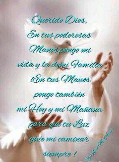 Querido Dios,En tus poderosas Manos,pongo mi vida y la de mi Familia !En tus Manos pongo también mi Hoy y mi Mañana para que tu Luz guíe mi caminar siempre !