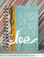 A Project by bluestardesign from our Scrapbooking Altered Projects Galleries originally submitted 11/01/13 at 08:07 AM