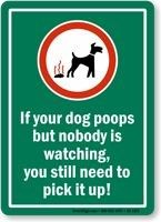 Get If Dog Poops Pick It Up Sign. Easy to apply/install. Fast and flat shipping. Best Way To Clean Up Dog Poop In Yard Dog Whisperer, Dog Cleaning, Dog Pee, Up Dog, Dog Barking, Dog Training Tips, Potty Training, Dog Behavior, Dog Quotes