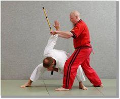Martial Arts of the World. Filipino, Sword Fight, Jiu Jitsu, Kung Fu, Martial Arts, Modern, Videos, Style, Trendy Tree