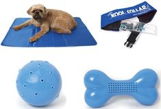 Muttropolis wants to help your pooch beat the heat this summer with their great Keep Cool Collection. Some of my favorites include the Pressure Activated Cool Pet Pad, the Cooling Dog Collar, and these Freezable Water Soak Dog Toys that combine fun with refreshment. Keep cool and play on!