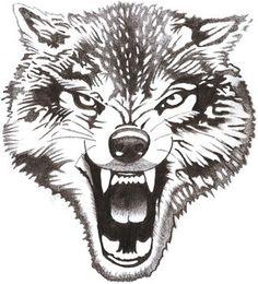 волк рисунок - Hledat Googlem