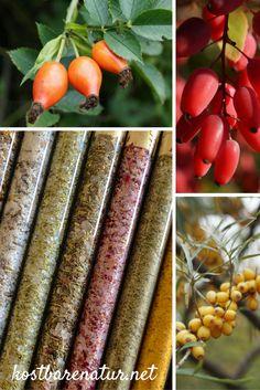 Mit Wildfrüchten lassen sich köstliche und gesunde Salzmischungen herstellen.