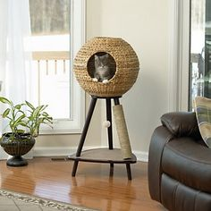 Sauder Woodworking Natural Sphere in. Cat Tower - With the Sauder Woodworking Natural Sphere Cat Tower there& finally cat furniture you& actually want to have in your living room. Its tripod stand. Cool Cat Trees, Cool Cats, Cat Scratching Tree, Scratching Post For Cats, Cat Towers, Cat Scratcher, Cat Condo, Cat Room, Pet Furniture